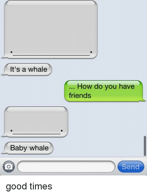 Friends, Good, and Baby: It's a whale  Baby whale  How do you have  friends  Send good times