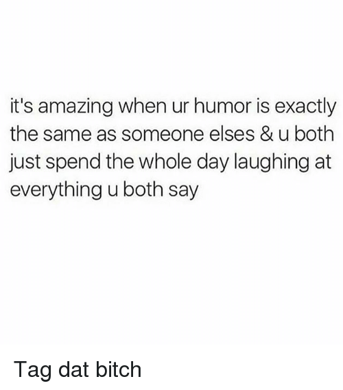 Bitch, Memes, and Amazing: it's amazing when ur humor is exactly  the same as someone elses & u both  just spend the whole day laughing at  everything u both say Tag dat bitch