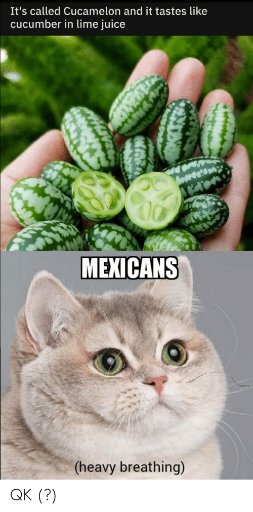 Juice, Espanol, and LatinoPeopleTwitter: It's called Cucamelon and it tastes like  cucumber in lime juice  MEXICANS  (heavy breathing) QK (?)