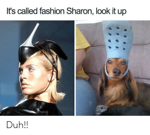 Fashion, Look, and  Called: It's called fashion Sharon, look it up Duh!!