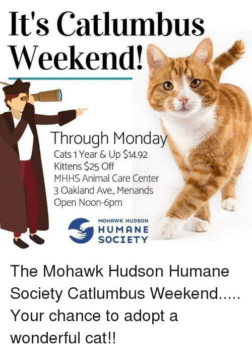 Cats, Memes, and Animal: It's Catlumbus  Weekend!  Through Monday  Cats 1 Year & Up $1492  Kittens $25 Off  MHHS Animal Care Center  3 Oakland Ave, Menands  Open Noon-6pm  MOHAWK HUDSON  HUMANE  SOCIETY The Mohawk Hudson Humane Society   Catlumbus Weekend..... Your chance to adopt a wonderful cat!!