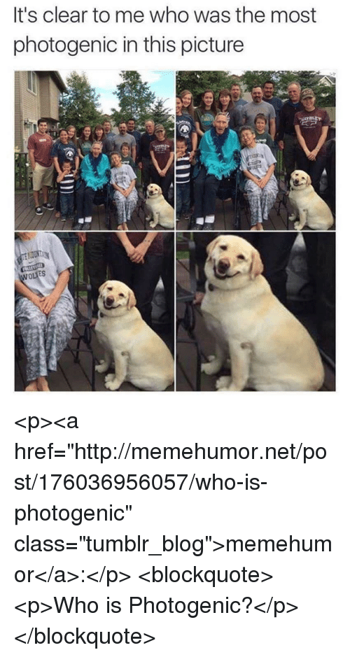 """Tumblr, Blog, and Http: It's clear to me who was the most  photogenic in this picture  ES <p><a href=""""http://memehumor.net/post/176036956057/who-is-photogenic"""" class=""""tumblr_blog"""">memehumor</a>:</p>  <blockquote><p>Who is Photogenic?</p></blockquote>"""
