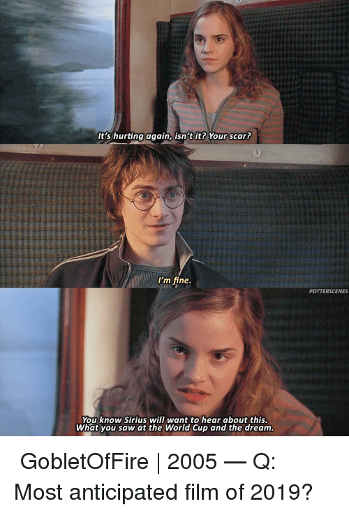 Sirius: It's hurting again, isn't it? Your scar?  I'm fine.  POTTERSCENES  You know Sirius will want to hear about this.  What you saw at the World Cup and the dream ➙ GobletOfFire | 2005 — Q: Most anticipated film of 2019?