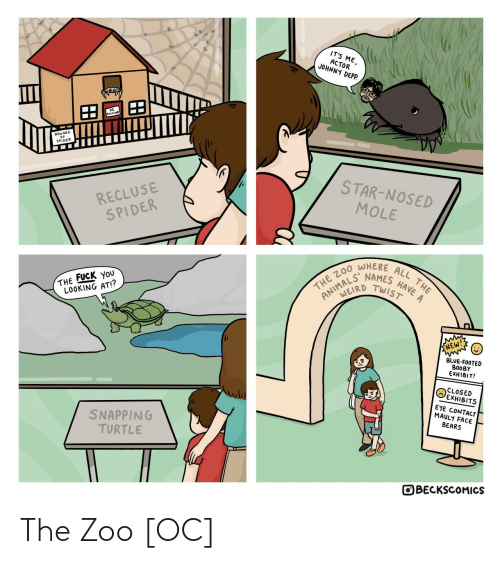 the the: IT'S ME,  ACTOR  JOHNNY DEPP.  BEWARE  SPIDER  STAR-NOSED  RECLUSE  SPIDER  MOLE  WHERE  HAVE A  NAMES  TWIST  ALL THE  THE ZO0  ANIMALD  THE FUCK YoU  LOOKING AT!?  ENEW!  BLUE-FOOTED  BOOBY  EXHIBIT!  CLOSED  EXHIBITS  EYE CONTACT  MAULY FACE  BEARS  SNAPPING  TURTLE  OBECKSCOMICS The Zoo [OC]