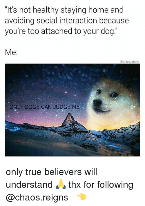 """Dogee: """"It's not healthy staying home and  avoiding social interaction because  you're too attached to your dog.  Me:  @chaos.reigns  ONLY DOGE CAN JUDGE ME only true believers will understand 🙏 thx for following @chaos.reigns_ 👈"""
