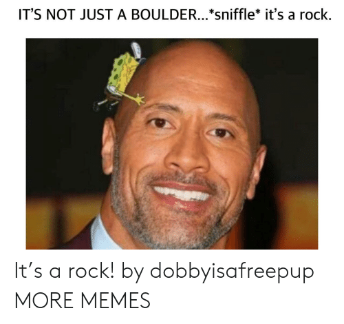 Dank, Memes, and Target: IT'S NOT JUST A BOULDER...*sniffle* it's a rock It's a rock! by dobbyisafreepup MORE MEMES
