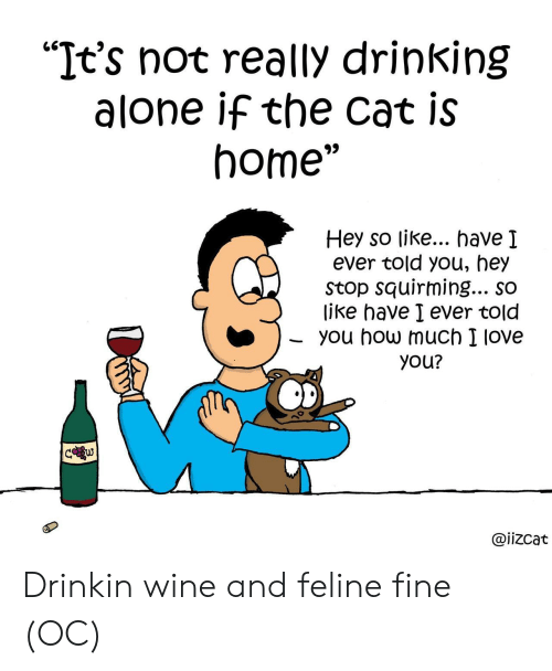 """Being Alone, Drinking, and Love: """"It's not really drinking  alone if the cat is  home""""  Hey so like... have I  ever told you, hey  Stop squirming... so  like have I ever told  you how much I love  you?  C w  @iizcat Drinkin wine and feline fine (OC)"""