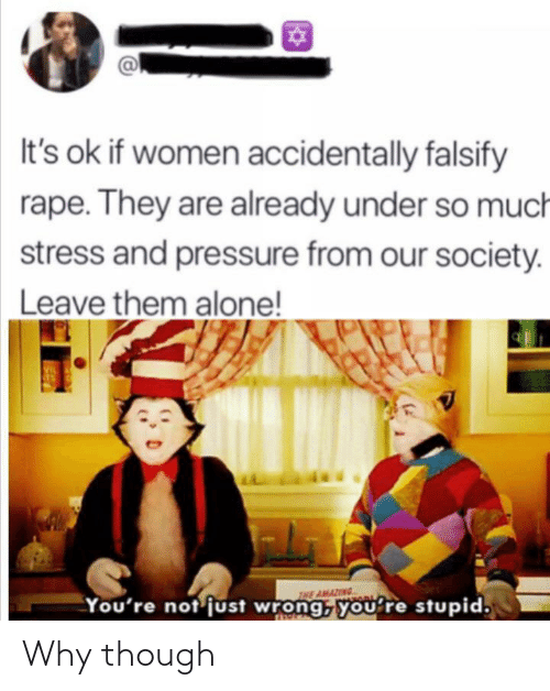 Being Alone, Pressure, and Rape: It's ok if women accidentally falsify  rape. They are already under so much  stress and pressure from our society.  Leave them alone!  VIL  THE AMAZING  You're not just wrong, you're stupid. Why though