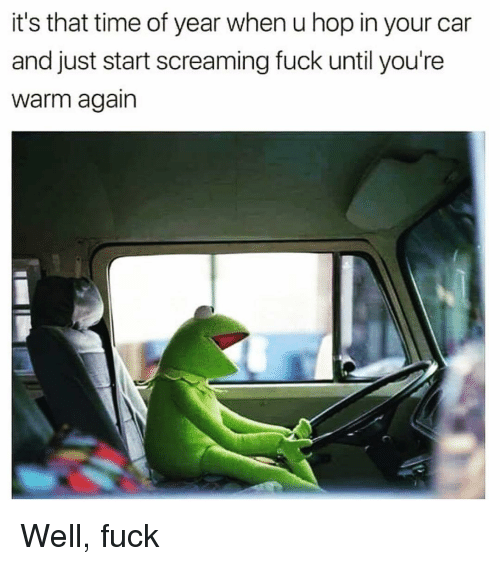 Fuck, Time, and Girl Memes: it's that time of year when u hop in your car  and just start screaming fuck until you're  Warm again Well, fuck