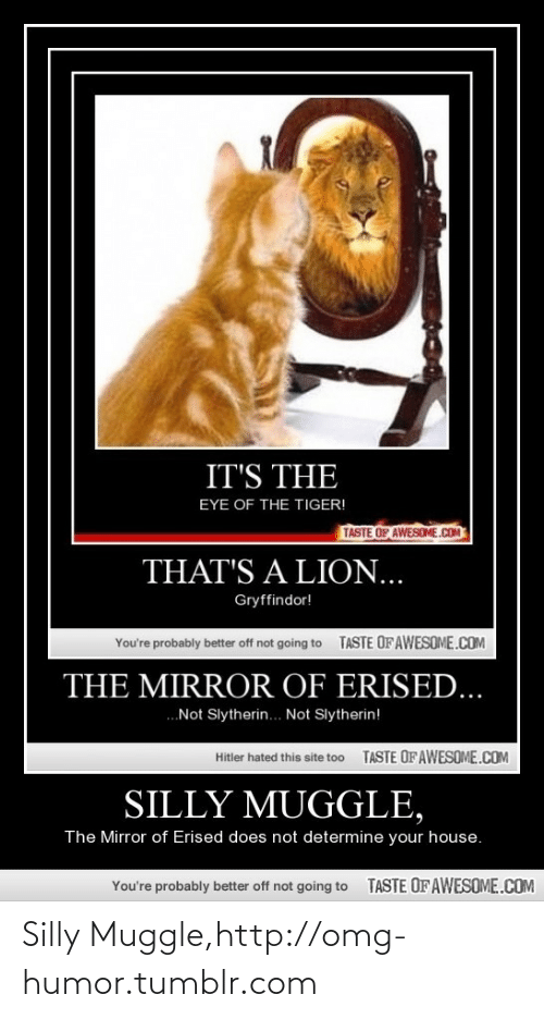 Not Slytherin: IT'S THE  EYE OF THE TIGER!  TASTE OF AWESOME.cOM  THAT'S A LION...  Gryffindor!  TASTE OFAWESOME.COM  You're probably better off not going to  THE MIRROR OF ERISED...  .Not Slytherin. Not Slytherin!  TASTE OF AWESOME.COM  Hitler hated this site to0  SILLY MUGGLE,  The Mirror of Erised does not determine your house.  TASTE OFAWESOME.COM  You're probably better off not going to Silly Muggle,http://omg-humor.tumblr.com