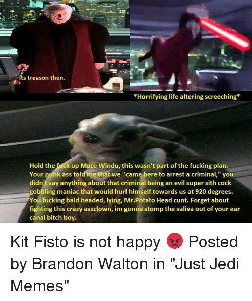 """Potatoing: Its treason then.  *Horrifying life altering screeching  Hold the fack up Mace Windu, this wasn't part of the fucking plan.  Your punk ass told me that we """"came here to arrest a criminal,"""" you  didn't say anything about that criminal being an evil super sith cock  gobbling maniac that would hurl himself towards us at 920 degrees.  You fucking bald headed, lying, Mr.Potato Head cunt. Forget about  fighting this crazy assclown, im gonna stomp the saliva out of your ear  canal bitch boy. Kit Fisto is not happy 😡  Posted by Brandon Walton in """"Just Jedi Memes"""""""