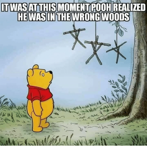 Moment, This, and Pooh: ITWASAT THIS MOMENT POOH REALIZED  HEWAS IN THEWRONGWOODS  lwint  nothinghappsnelotiay