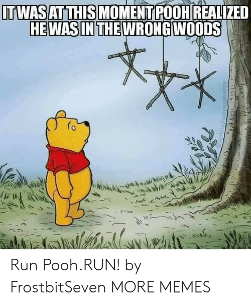Dank, Memes, and Run: ITWASAT THIS MOMENTPOOH REALIZED  HEWASIN THEWRONGWOODS  0 Run Pooh.RUN! by FrostbitSeven MORE MEMES