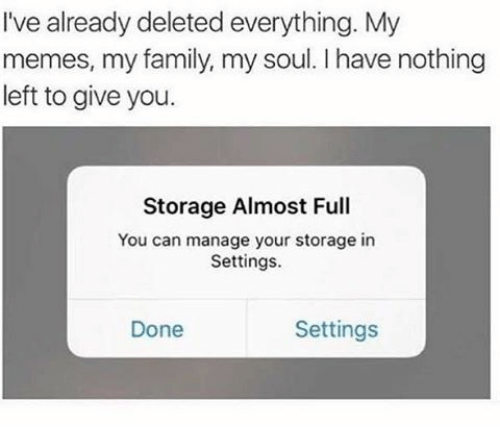 Delete Everything: I've already deleted everything. My  memes, my family, my soul. l have nothing  left to give you.  Storage Almost Full  You can manage your storage in  Settings.  Settings  Done