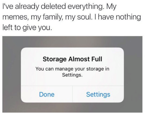 Delete Everything: I've already deleted everything. My  memes, my family, my soul. I have nothing  left to give you.  Storage Almost Full  You can manage your storage in  Settings.  Settings  Done