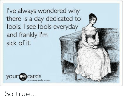 Im Sick: I've always wondered why  there is a day dedicated to  fools. I see fools everyday  and frankly I'm  sick of it.  your  e cards  someecards.com So true...
