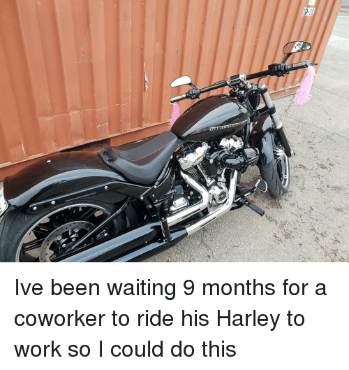 Harley: Ive been waiting 9 months for a coworker to ride his Harley to work so I could do this