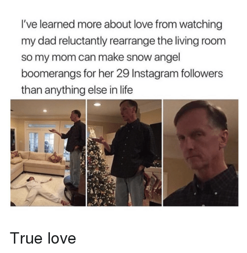 Instagram Followers: I've learned more about love from watching  my dad reluctantly rearrange the living room  so my mom can make snow angel  boomerangs for her 29 Instagram followers  than anything else in life <p>True love</p>