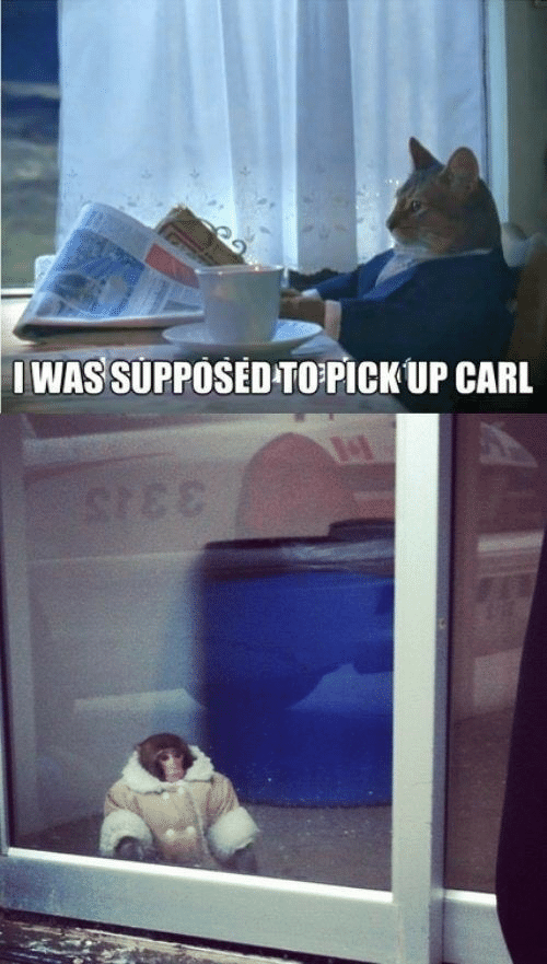 Carl, Stee, and Up Carl: IWAS SUPPOSED-TOPICK UP CARL  STEE