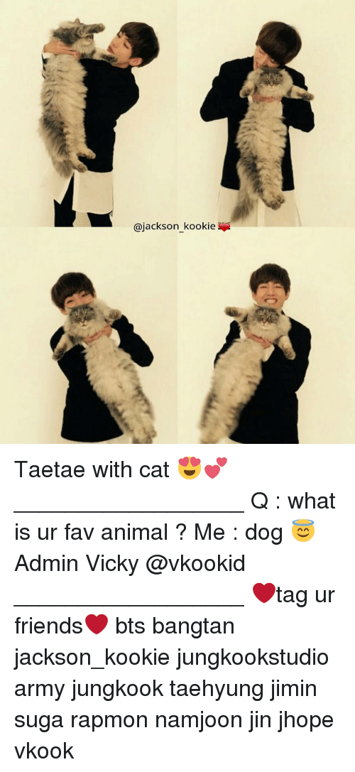 Kookie: @jackson kookie Taetae with cat 😍💕 __________________ Q : what is ur fav animal ? Me : dog 😇 Admin Vicky @vkookid __________________ ❤tag ur friends❤ bts bangtan jackson_kookie jungkookstudio army jungkook taehyung jimin suga rapmon namjoon jin jhope vkook