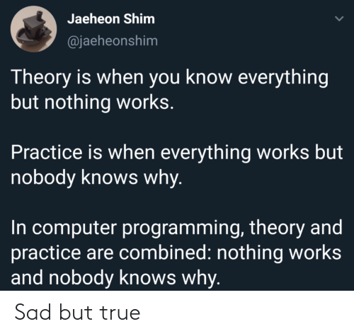Theory: Jaeheon Shim  @jaeheonshim  Theory is when you know everything  but nothing works.  Practice is when everything works but  nobody knows why.  In computer programming, theory and  practice are combined: nothing works  and nobody knows why. Sad but true