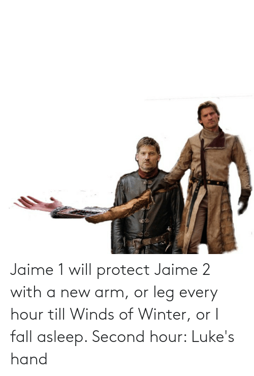 arm: Jaime 1 will protect Jaime 2 with a new arm, or leg every hour till Winds of Winter, or I fall asleep. Second hour: Luke's hand