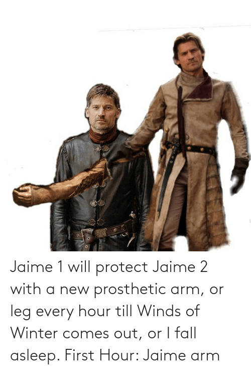 arm: Jaime 1 will protect Jaime 2 with a new prosthetic arm, or leg every hour till Winds of Winter comes out, or I fall asleep. First Hour: Jaime arm