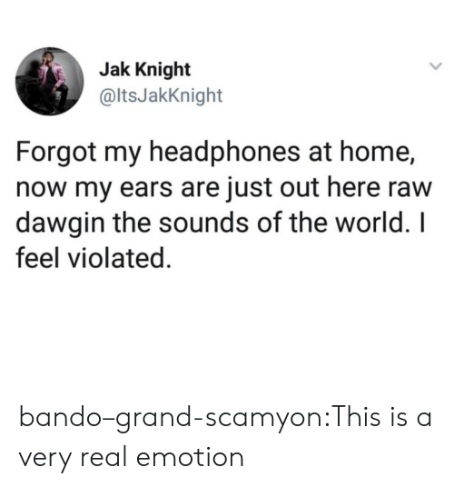 the sounds: Jak Knight  @ltsJakKnight  Forgot my headphones at home,  now my ears are just out here raw  dawgin the sounds of the world. I  feel violated. bando–grand-scamyon:This is a very real emotion
