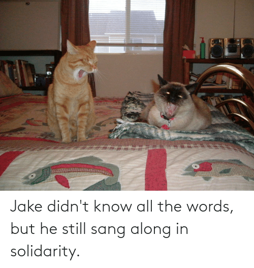 Sang: Jake didn't know all the words, but he still sang along in solidarity.
