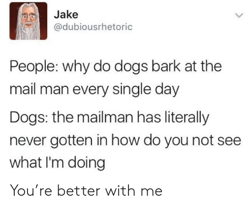 Dogs, Mail, and Never: Jake  @dubiousrhetoric  People: why do dogs bark at the  mail man every single day  Dogs: the mailman has literally  never gotten in how do you not see  what I'm doing You're better with me