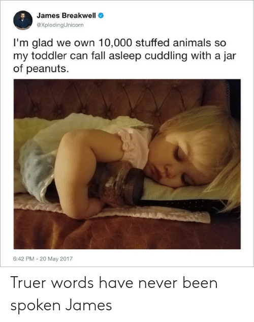 Animals, Fall, and Never: James Breakwell  eXplodingUnicorn  I'm glad we own 10,000 stuffed animals so  my toddler can fall asleep cuddling with a jar  of peanuts  6:42 PM - 20 May 2017 Truer words have never been spoken James
