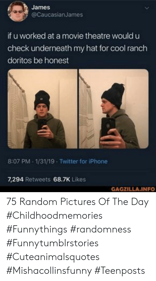 Iphone, Twitter, and Cool: James  @CaucasianJames  if u worked at a movie theatre would u  check underneath my hat for cool ranch  doritos be honest  8:07 PM 1/31/19 Twitter for iPhone  7,294 Retweets 68.7K Likes  GAGZILLA.INFO 75 Random Pictures Of The Day #Childhoodmemories #Funnythings #randomness #Funnytumblrstories #Cuteanimalsquotes #Mishacollinsfunny #Teenposts