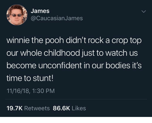 Winnie the Pooh: James  @CaucasianJames  winnie the pooh didn't rock a crop top  our whole childhood just to watch us  become unconfident in our bodies it's  time to stunt!  11/16/18, 1:30 PM  19.7K Retweets 86.6K Likes