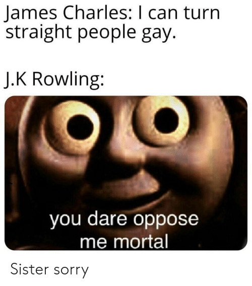 Sorry, J. K. Rowling, and Gay: James Charles: I can turn  straight people gay.  J.K Rowling:  you dare oppose  me mortal Sister sorry