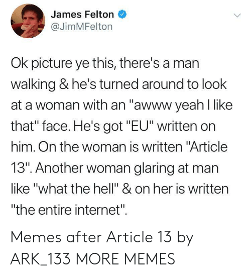 """Another Woman: James Felton  @JimMFelton  Ok picture ye this, there's a mar  walking & he's turned around to look  at a woman with an """"awww yeah l like  that"""" face. He's got """"EU"""" written on  him. On the woman is written """"Article  13"""". Another woman glaring at man  like """"what the hell"""" & on her is written  """"the entire internet"""". Memes after Article 13 by ARK_133 MORE MEMES"""