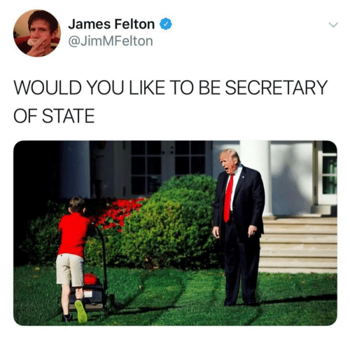 Secretary of State, James, and You: James Felton  @JimMFelton  WOULD YOU LIKE TO BE SECRETARY  OF STATE
