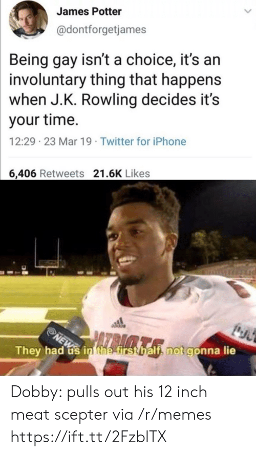 Iphone, Memes, and Twitter: James Potter  @dontforgetjames  Being gay isn't a choice, it's an  involuntary thing that happens  when J.K. Rowling decides it's  your time.  12:29 23 Mar 19 Twitter for iPhone  6,406 Retweets 21.6K Likes  They had us in the first half, not gonna lie  NEW Dobby: pulls out his 12 inch meat scepter via /r/memes https://ift.tt/2FzblTX
