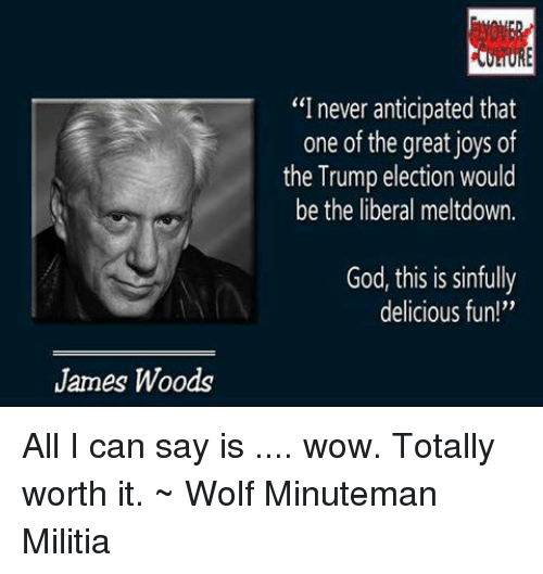"Memes, Militia, and Wolf: James Woods  ""I never anticipated that  one of the great joys of  the Trump election would  be the liberal meltdown.  God, this is sinfully  delicious fun All I can say is .... wow. Totally worth it. ~ Wolf  Minuteman Militia"