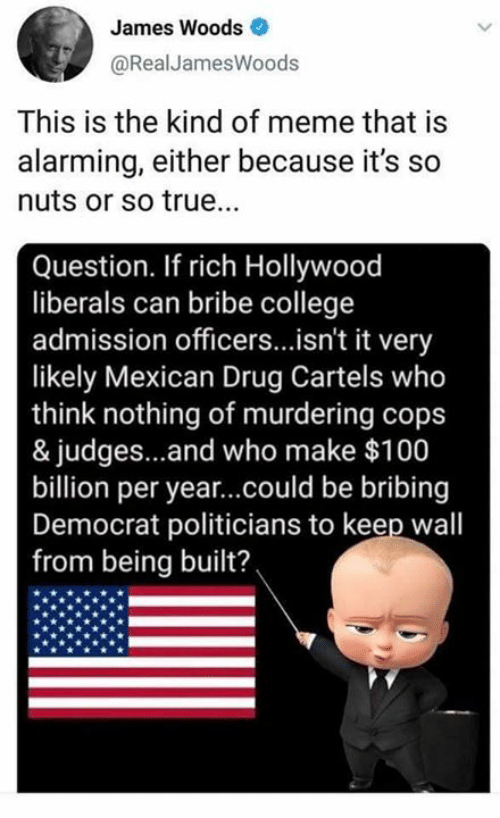 College, Meme, and Memes: James Woods  @RealJamesWoods  This is the kind of meme that is  alarming, either because it's so  nuts or so true..  Question. If rich Hollywood  liberals can bribe college  admission officers...isn't it very  likely Mexican Drug Cartels who  think nothing of murdering cops  & judges...and who make $100  billion per year...could be bribing  Democrat politicians to keep wal  from being built?