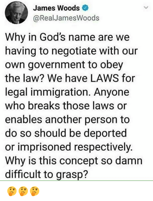Memes, Immigration, and Government: James Woods  @RealJamesWoods  Why in God's name are we  having to negotiate with our  own government to obey  the law? We have LAWS for  legal immigration. Anyone  who breaks those laws or  enables another person to  do so should be deported  or imprisoned respectively.  Why is this concept so damn  difficult to grasp? 🤔🤔🤔