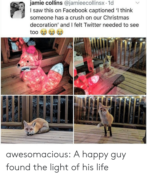 Christmas, Crush, and Facebook: jamie collins @jamieecollinsx.1d  I saw this on Facebook captioned 'l think  someone has a crush on our Christmas  decoration' and I felt Twitter needed to see awesomacious:  A happy guy found the light of his life