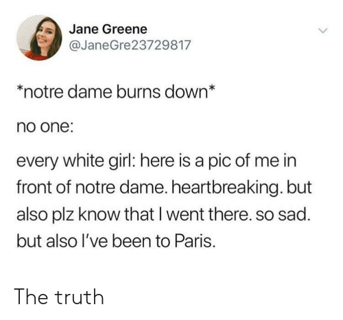 Pic Of Me: Jane Greene  @JaneGre23729817  *notre dame burns down*  no one:  every white girl: here is a pic of me in  front of notre dame. heartbreaking. but  also plz know that I went there. so sad.  but also l've been to Paris. The truth