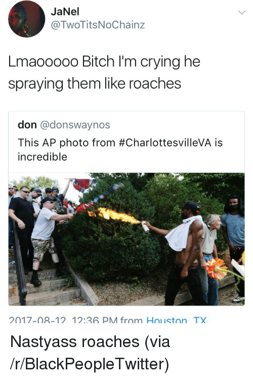 Bitch, Blackpeopletwitter, and Crying: JaNel  @TwoTitsNoChainz  Lmaooooo Bitch I'm crying he  spraying them like roaches  don @donswaynos  This AP photo from #CharlottesvilleVA is  incredible  2017-08-12 1:36 PM from Houston TX <p>Nastyass roaches (via /r/BlackPeopleTwitter)</p>