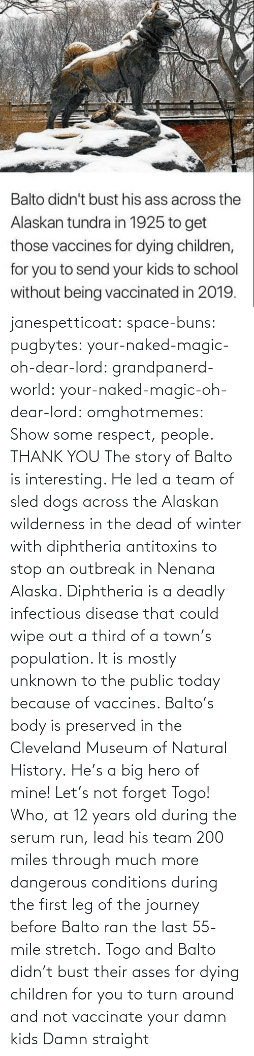 Alaska: janespetticoat: space-buns:  pugbytes:   your-naked-magic-oh-dear-lord:  grandpanerd-world:   your-naked-magic-oh-dear-lord:  omghotmemes: Show some respect, people.  THANK YOU   The story of Balto is interesting. He led a team of sled dogs across the Alaskan wilderness in the dead of winter with diphtheria antitoxins to stop an outbreak in Nenana Alaska. Diphtheria is a deadly infectious disease that could wipe out a third of a town's population. It is mostly unknown to the public today because of vaccines. Balto's body is preserved in the Cleveland Museum of Natural History.   He's a big hero of mine!   Let's not forget Togo! Who, at 12 years old during the serum run, lead his team 200 miles through much more dangerous conditions during the first leg of the journey before Balto ran the last 55-mile stretch.   Togo and Balto didn't bust their asses for dying children for you to turn around and not vaccinate your damn kids    Damn straight