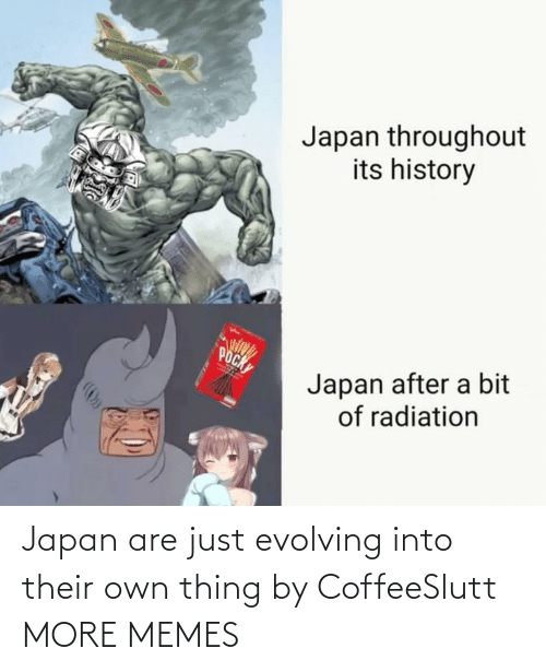 History: Japan throughout  its history  POCK  Japan after a bit  of radiation Japan are just evolving into their own thing by CoffeeSlutt MORE MEMES