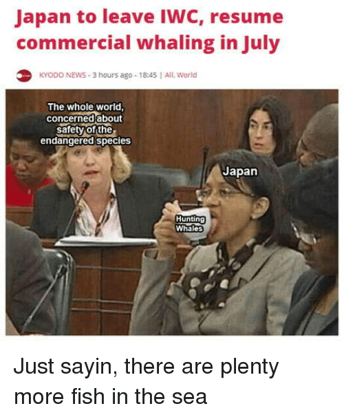 News, Fish, and Japan: Japan to leave IWC, resume  commercial whaling in July  KYODO NEWS 3 hours ago 18:45 All World  The whole world  concerned about  safety of the  endangered species  Japan  Whales Just sayin, there are plenty more fish in the sea