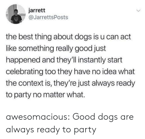 Dogs, Party, and Tumblr: jarrett  @JarrettsPost:s  the best thing about dogs is u can act  like something really good just  happened and they'll instantly start  celebrating too they have no idea what  the context is, they're just always ready  to party no matter what. awesomacious:  Good dogs are always ready to party