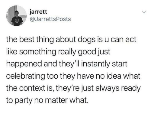 Dank, Dogs, and Party: jarrett  @JarrettsPosts  the best thing about dogs is u can act  like something really good just  happened and they'linstantly start  celebrating too they have no idea what  the context is, they're just always ready  to party no matter what.