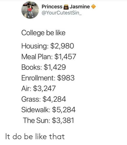 housing: Jasmine  @YourCutestSin_  Princess  College be like  Housing: $2,980  Meal Plan: $1,457  Books: $1,429  Enrollment: $983  Air: $3,247  Grass: $4,284  Sidewalk: $5,284  The Sun: $3,381 It do be like that