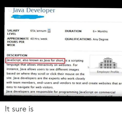 websites: Java Developer  SALARY  LEVEL  65k/annum  DURATION  6+ Months  APPROXIMATE 40 Hrs/week  HOURS PER  QUALIFICATIONS Any Degree  WEEK  DESCRIPTION  JavaScript, also known as Java for short, is a scripting  Tanguage that allows interactivity on websites. For  instance, Java allows users to see different images  based on where they scroll or click their mouse on the  Employer Profile  site. Java developers are the experts who work closely  with team members, end-users and vendors to test and create websites that ar  easy to navigate for web visitors  Java developers are responsible for programming JavaScript on commercial It sure is